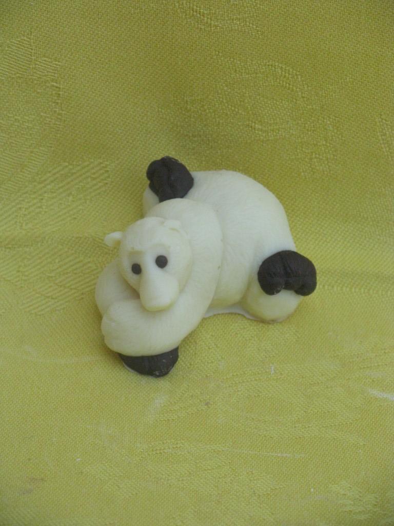 orsetto-polare