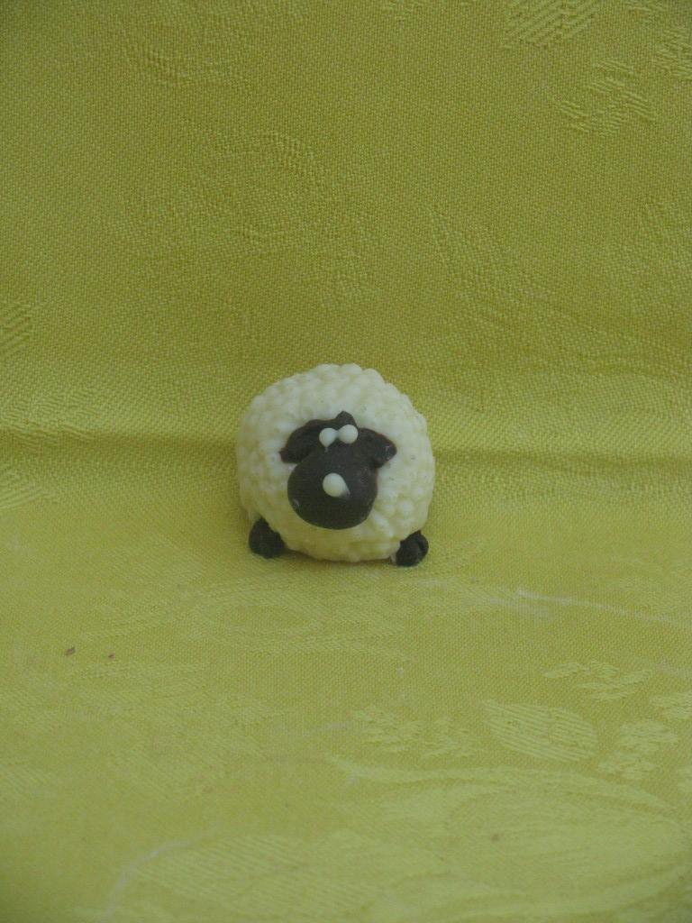 pecorella-b